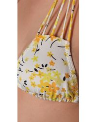 Salt Swimwear - Yellow Lola Bikini Top - Lyst