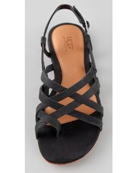 UGG | Black Anatina Flat Sandals | Lyst