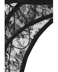 Damaris - Black Risqué Lace Corset Briefs - Lyst