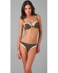 Calvin Klein - Green Sugar & Spice Bikini Briefs - Lyst
