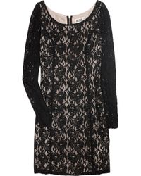 Alice By Temperley | Black Lace Shift Dress | Lyst