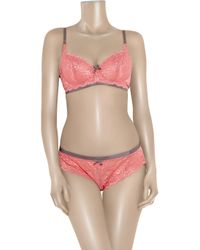 Elle Macpherson - Pink Cloud Swing Lace Underwired Dd To G Cup Bra - Lyst