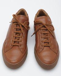 Common Projects - Brown Premium Achilles for Men - Lyst