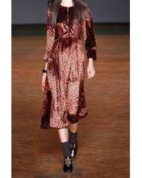 Marc By Marc Jacobs - Brown Sphinx Leopard-print Fine-velvet Dress - Lyst