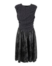 Bolongaro Trevor | Gray Paloma Lace Gull Grey & Black Dress | Lyst