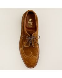 J.Crew | Brown Alden® For J.crew Suede Longwing Bluchers for Men | Lyst