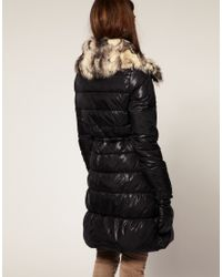 ASOS Collection - Black Asos Petite Padded Jacket with Fur Trim - Lyst