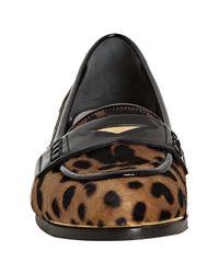 Miu Miu - Multicolor Tan and Black Leopard Print Pony Hair Loafers - Lyst