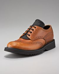 Prada | Brown Lace-up Wing-tip Oxford for Men | Lyst