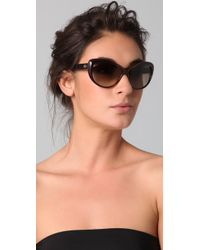 Gucci - Brown Rounded Cat Eye Sunglasses - Lyst