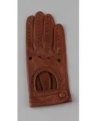 Club Monaco - Brown Serena Driving Gloves - Lyst