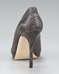 Jimmy Choo | Gray Snake-print Peep-toe Platform Pump | Lyst