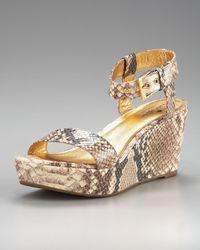 kate spade new york | Multicolor Bailyn Snake-print Wedge Sandal | Lyst