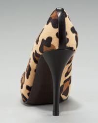Stuart Weitzman - Multicolor Leopard-Print Calf Hair Pump - Lyst