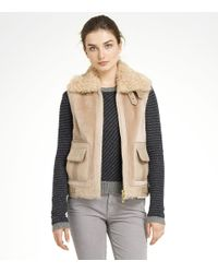 Tory Burch | Brown Hiltibrand Vest | Lyst