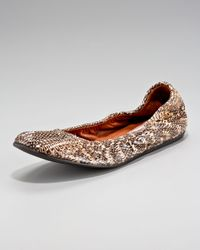 Lanvin | Brown Snakeskin Ballerina Flat | Lyst