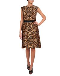 Giambattista Valli | Brown Leopard Print Dress | Lyst