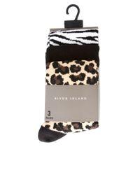River Island | Black 3 Pack Animal Print Socks for Men | Lyst