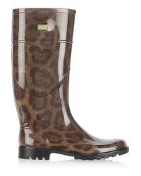 Dolce & Gabbana - Multicolor Leopard-print Pvc Wellington Boots - Lyst