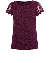 Oasis | Purple Crochet Lace Top | Lyst