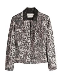 Étoile Isabel Marant | Gray Webster Leopard-print Cord and Leather Jacket | Lyst