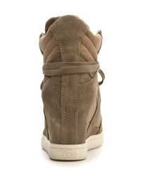 Ash - Brown Cool Laceup Wedge Sneakers - Lyst