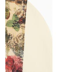 Preen By Thornton Bregazzi | Pink Rose Colorblock Cottonblend Dress | Lyst