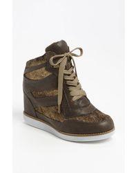 Jeffrey Campbell | Brown Gio Hidden Wedge Sneaker | Lyst