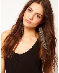 River Island | Natural Printed Feather Earrings | Lyst