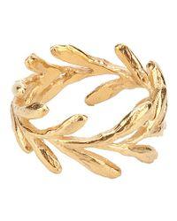 Catherine Weitzman - Metallic Gold Aloe Ring - Lyst