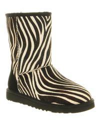 Ugg | Animal Classic Short Boot Zebra Suede | Lyst