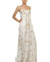 Alexander McQueen | Natural Dragon Fly Print Silk Chiffon Long Dress | Lyst