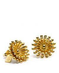 COACH | Metallic Flower Stud Earring | Lyst