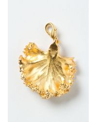 Anthropologie | Metallic Gilt Kale Collectors Charm | Lyst