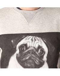 Criminal Damage - Gray Pug Life Sweatshirt for Men - Lyst