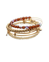 ALEX AND ANI - Brown Take On Me Expandable Wire Bracelet Set - Lyst