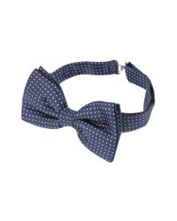 FORZIERI - Blue Small Polkadot Pre-tied Silk Bowtie for Men - Lyst