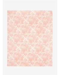 Stella McCartney | Pink Floral Printed Scarf | Lyst