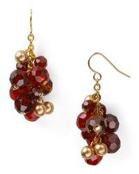 Carolee | Metallic 14k Goldplated Vintage Bordeaux Cluster Drop Earrings | Lyst