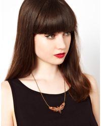Tatty Devine - Brown Moth Necklace - Lyst
