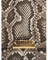 Burberry Prorsum - Brown Roslin Python Skin Clutch - Lyst