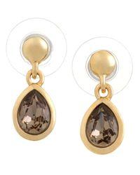 Aurora | Brown Swarovski 18ct Yellow Gold Greige Earrings | Lyst