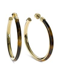 Michael Kors | Multicolor Gold Tone Tortoise Large Hoop Earrings | Lyst
