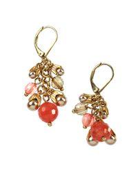 Jones New York - Orange Worn Goldtone Cherry Quartz Leverback Earrings - Lyst