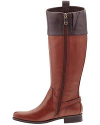 Tommy Hilfiger   Brown Hamden Tall Riding Boots   Lyst