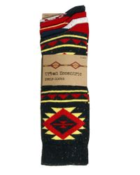 Humor - Red Urban Eccentric 5 Pack Flex Socks for Men - Lyst