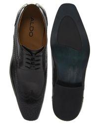 ALDO | Black Roary Wingcap Shoes for Men | Lyst