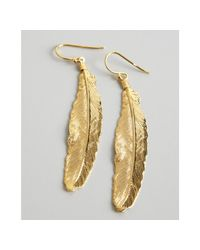 A.V. Max | Metallic Gold Metal Feather Earrings | Lyst