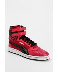 Urban Outfitters - Pink Sky Wedge Scaled Animal Hightop Sneaker - Lyst