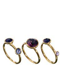 Denham - Purple Ted Baker Jewel Stack Rings - Lyst
